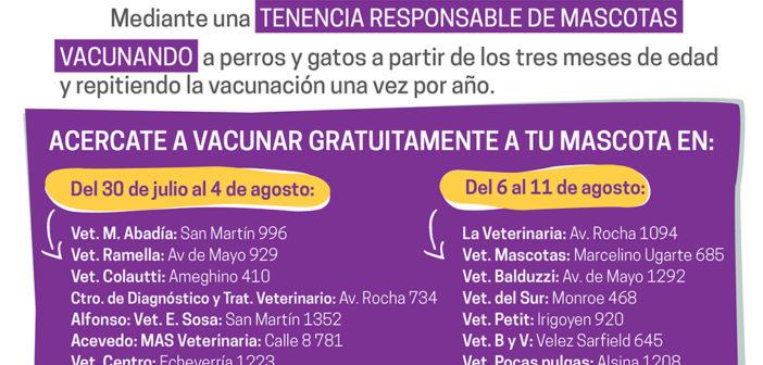 Afiche Vacunación Antirrábica I