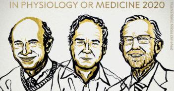 Nobel_de_Medicina-Premios-Medicina-Salud_525958132_161787659_1024x576